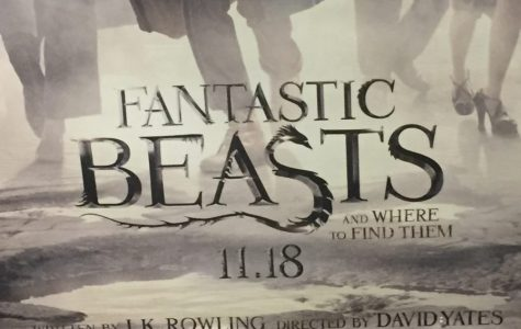 'Fantastic Beasts': another keyhole look into the Wizarding World (Review)
