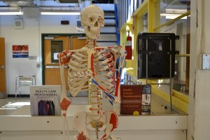 Students in the new Health Care Academy program will learn vital skills for future jobs in the medical field.