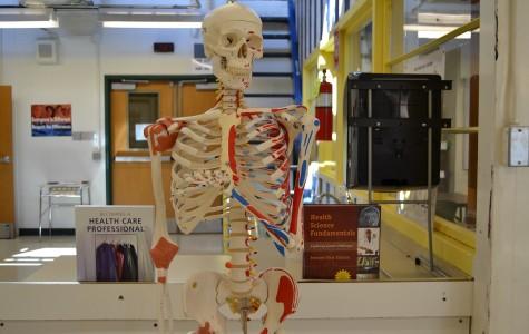 Health Care Academy helps students make healthy career choices