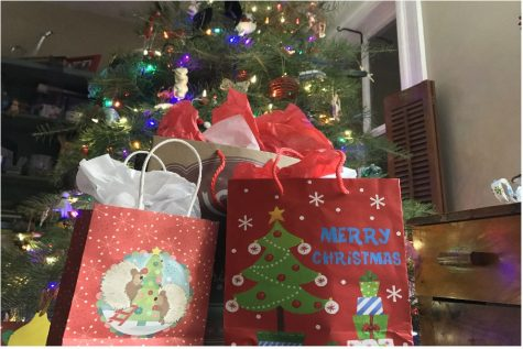 Adopt a Family brings presents to families in need within the community.