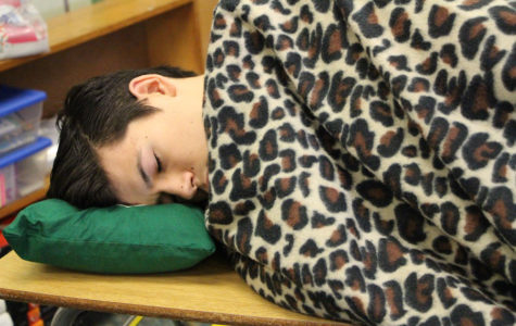 Finishing strong: the effects of senioritis