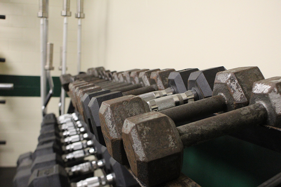 Weighing Down: Weights in the fitness room are lined up, ready to be used by the students of CHS.