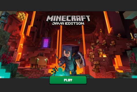 IF YOU BUILD IT, THEY WILL PLAY: Minecraft, a popular video game on a variety of platforms, has been entertaining gamers of all ages since 2009.  But what makes this game so popular?